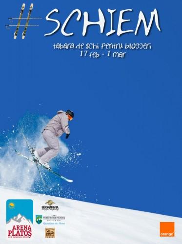 schiem 2014 poster